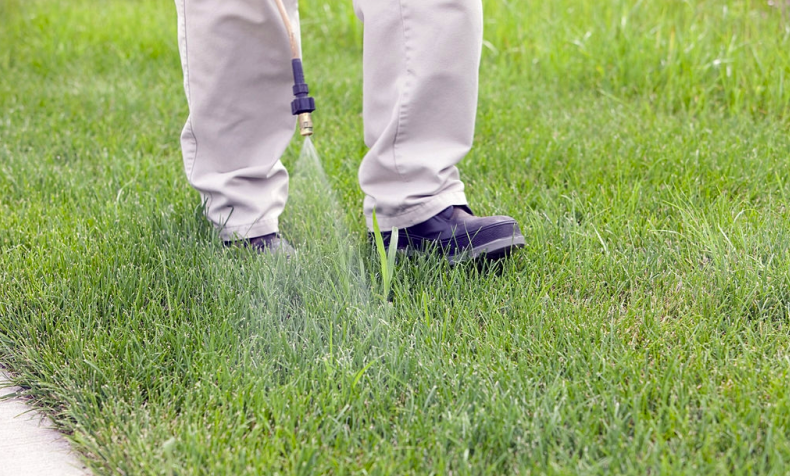 when to apply crabgrass preventer